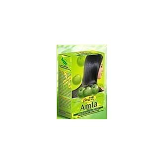 Hesh Herbal Amla / Indian Gooseberry Powder For Dark & Healthy Hair Naturally - 100 gms hesg
