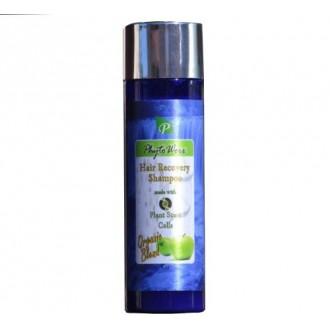 PhytoWorx cheveux organique Perte de shampooing | Avec des plantes des cellules souches pour la récupération des cheveux et Regr
